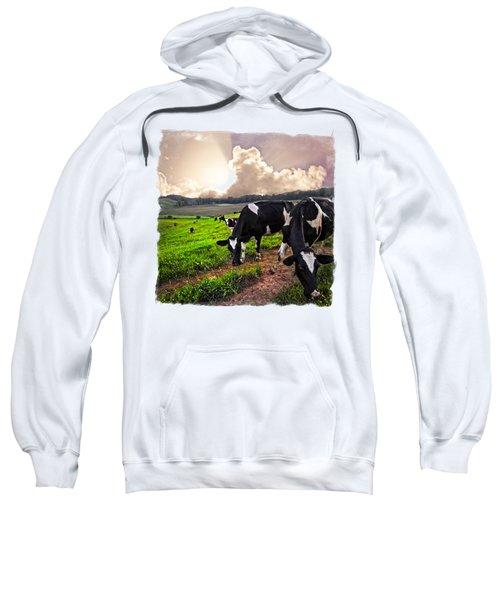 Cows At Sunset Bordered Sweatshirt by Debra and Dave Vanderlaan