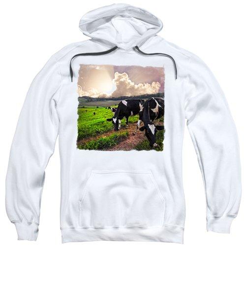 Cows At Sunset Bordered Sweatshirt