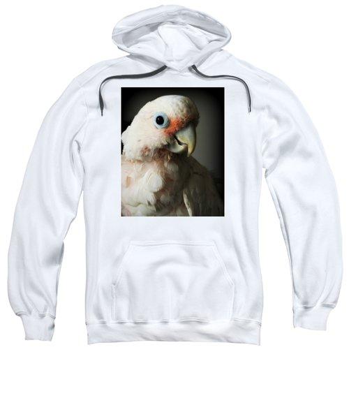 Cozmo Sweatshirt
