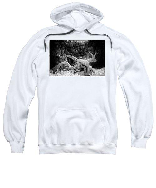 Creatures Of Bryce Canyon Sweatshirt