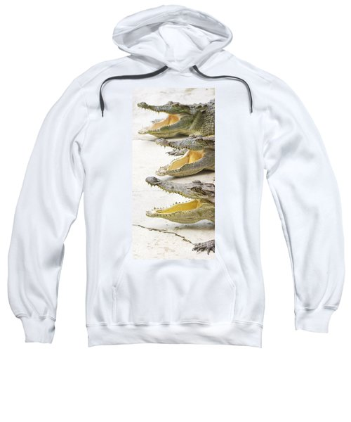 Crocodile Choir Sweatshirt by Jorgo Photography - Wall Art Gallery