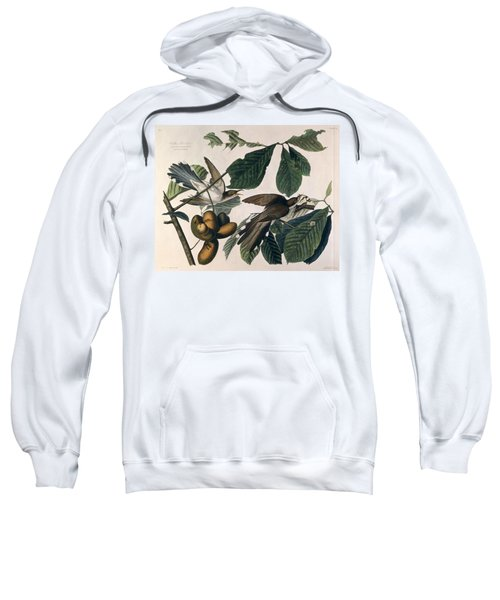 Cuckoo Sweatshirt by John James Audubon