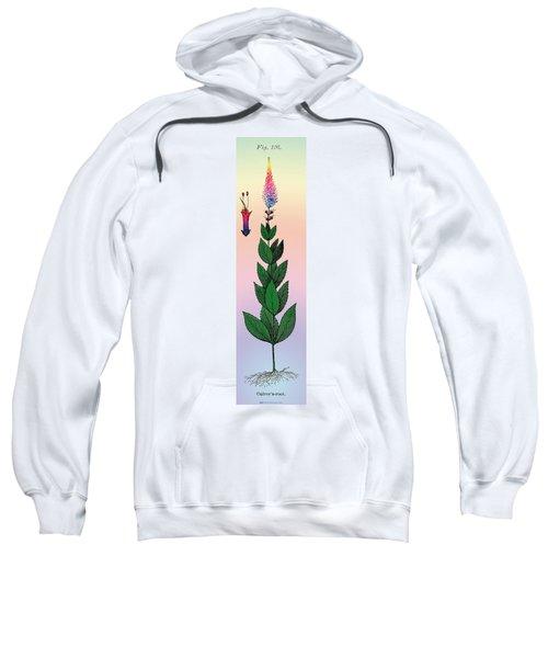 Culvers Root Sweatshirt