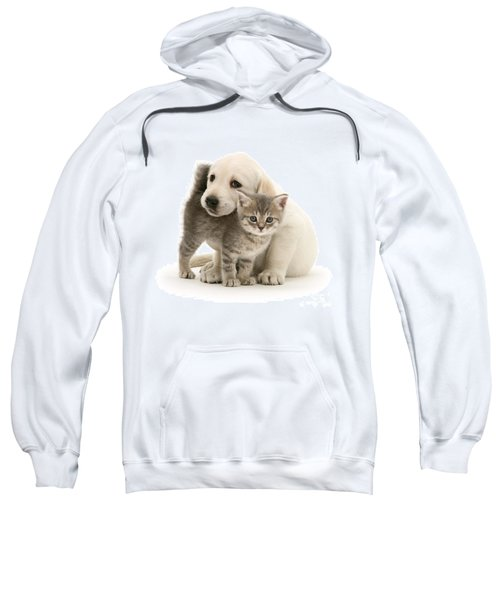 Cute Kitten And Perfect Puppy Sweatshirt