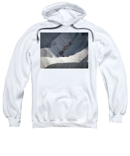 Dappled Sweatshirt