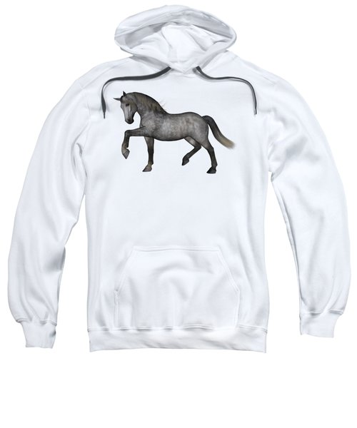 Dapplet Sweatshirt