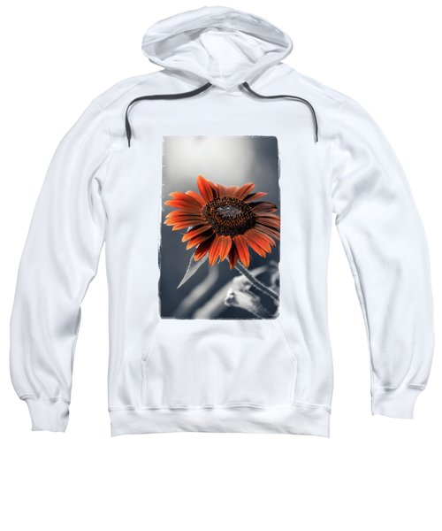 Dark Sunflower Sweatshirt by Konstantin Sevostyanov
