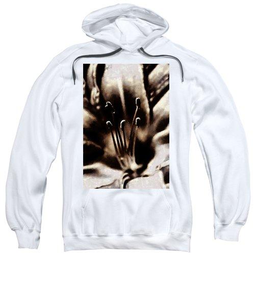 Daylily Study Sweatshirt