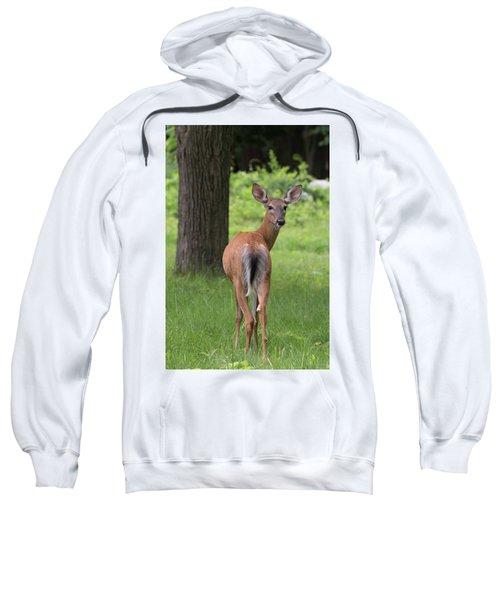 Deer Looking Back Sweatshirt