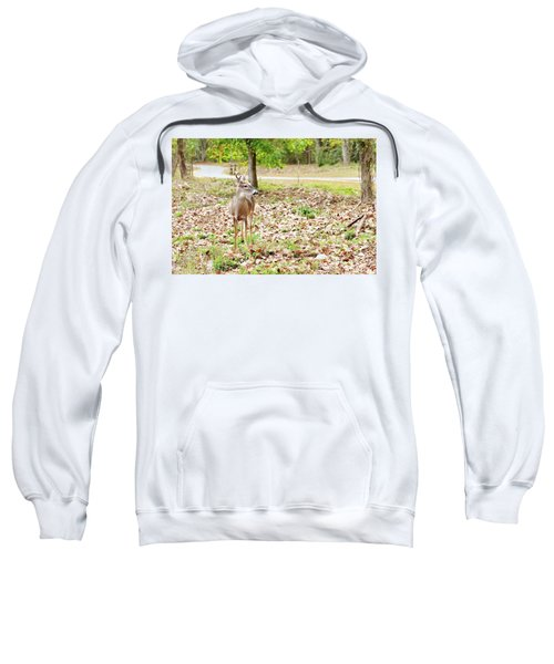 Deer Me, Are You In My Space? Sweatshirt