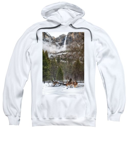 Deer Of Winter Sweatshirt