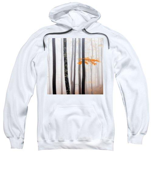 Delicate Forest Sweatshirt