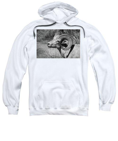 Desert Bighorn Sweatshirt