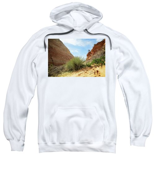 Desert Greenery Sweatshirt