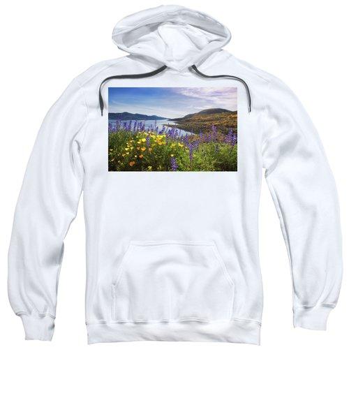 Diamond Valley Sweatshirt