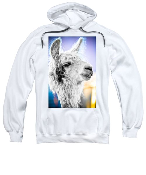 Dirtbag Llama Sweatshirt by TC Morgan