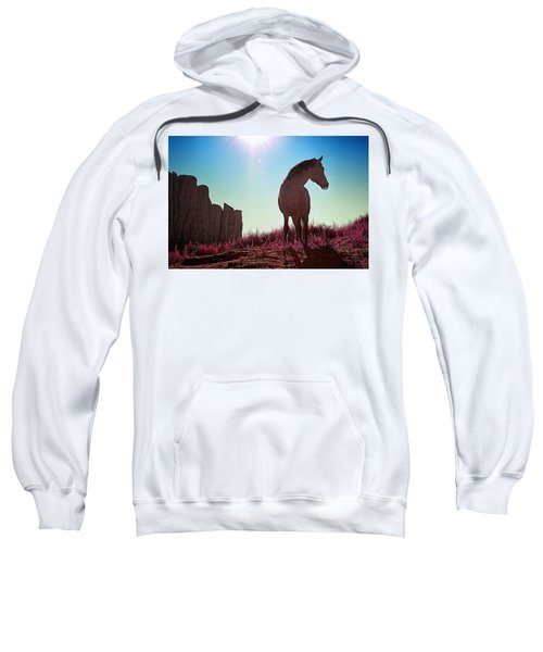 Do Not Take Photos Of Me Sweatshirt