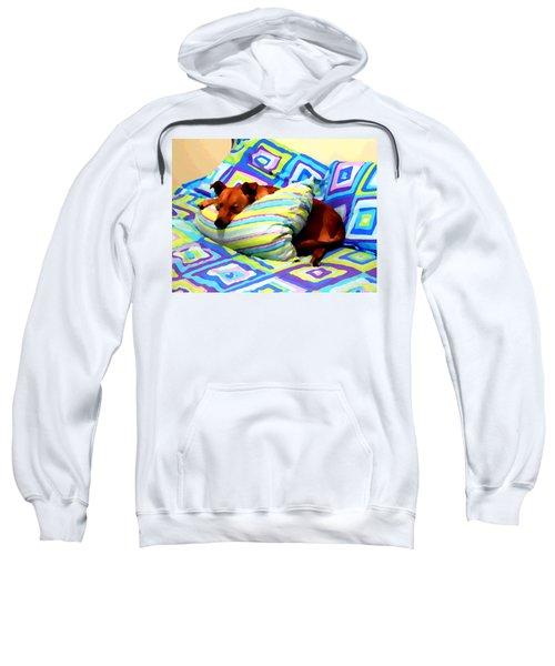 Dog Nap - Oil Effect Sweatshirt