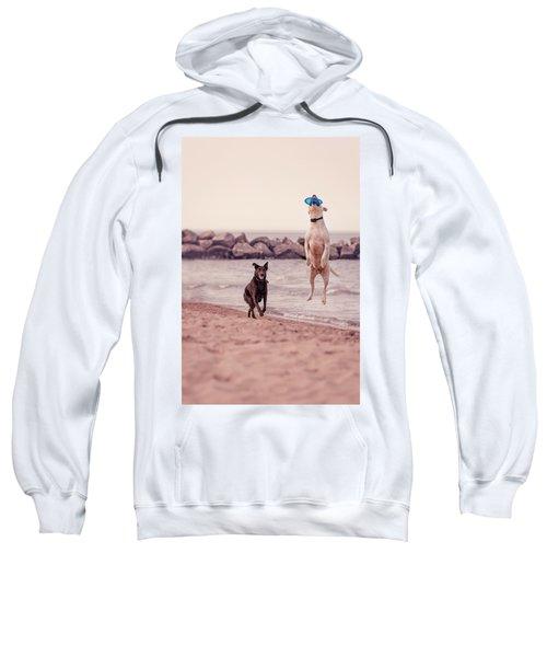 Dog With Frisbee Sweatshirt
