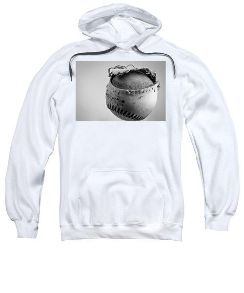 Dog's Ball Sweatshirt