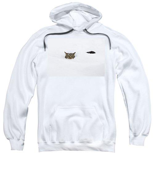 Domestic Cat Felis Catus In Deep Snow Sweatshirt