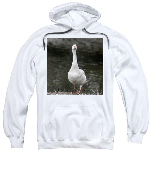 Domestic Geese Sweatshirt