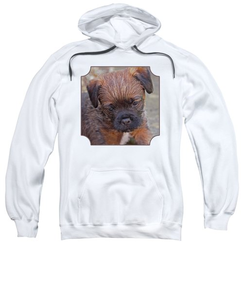 Don't Leave Me - Border Terrier Pupppy Sweatshirt