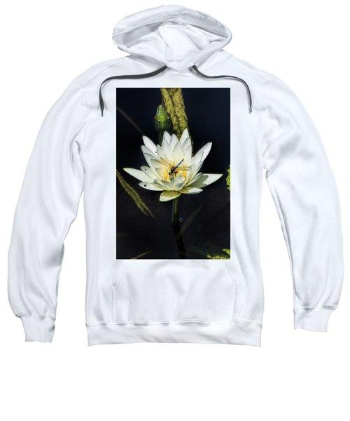Dragon Fly On Lily Sweatshirt
