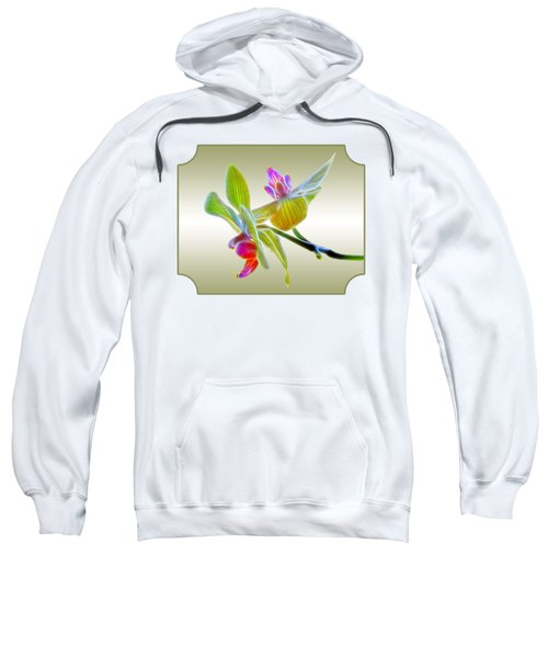 Dragon Glow Orchid Sweatshirt by Gill Billington