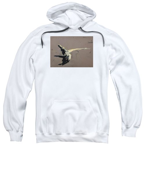 Coastal Driftwood Sweatshirt
