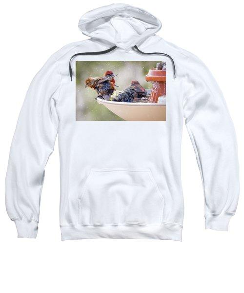 Drying Sweatshirt