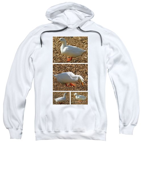 Duck Collage Mixed Media A51517 Sweatshirt