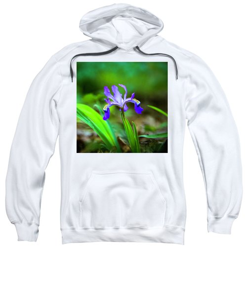 Dwarf Crested Iris Sweatshirt