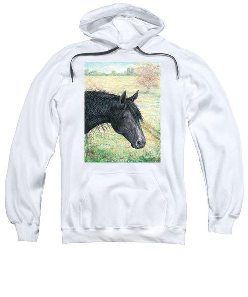 Ebony Sweatshirt