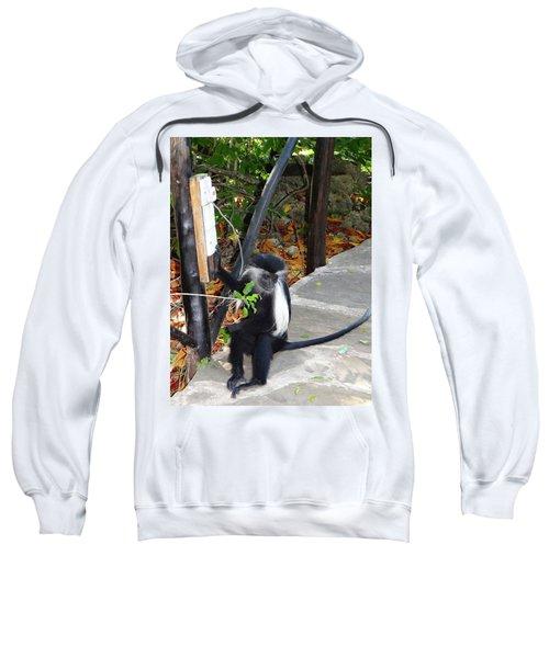 Electrical Work - Monkey Power Sweatshirt