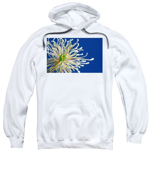 Entendulating Serene Blossom Sweatshirt
