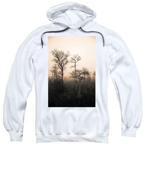 Everglades Cypress Stand Sweatshirt