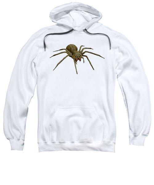 Evil Spider Sweatshirt by Martin Capek