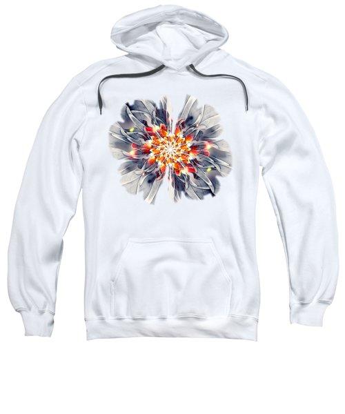 Exquisite Sweatshirt