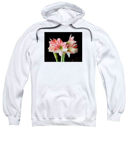 Fairyland Amaryllis  Sweatshirt