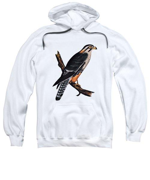 Falcon Aplomado Falcon Sweatshirt