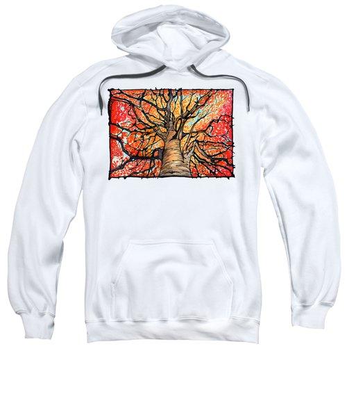 Fall Flush - Looking Up An Autumn Tree Sweatshirt