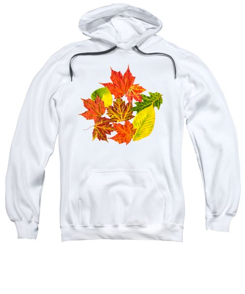 Sweatshirt featuring the mixed media Fall Leaves Pattern by Christina Rollo