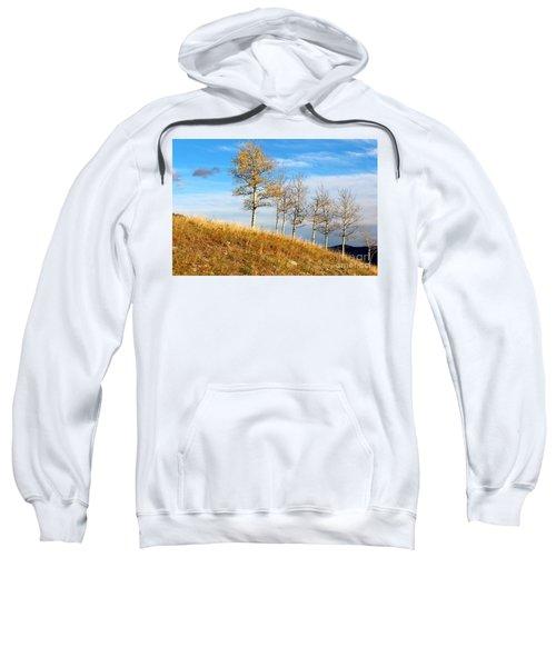 Fall Sentinels Sweatshirt