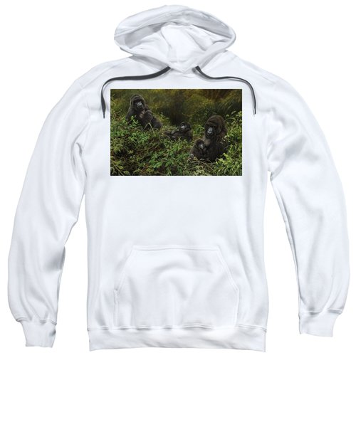 Family Of Gorillas Sweatshirt