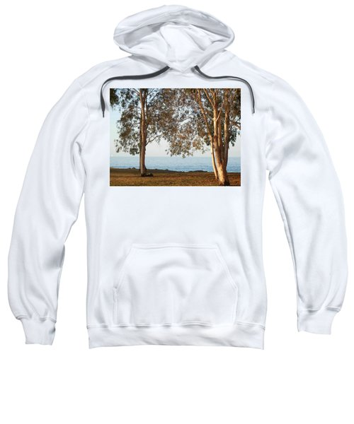 Family Roots Sweatshirt