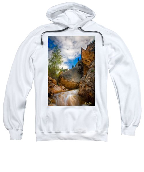 Fast-flowing Crazy Woman Sweatshirt