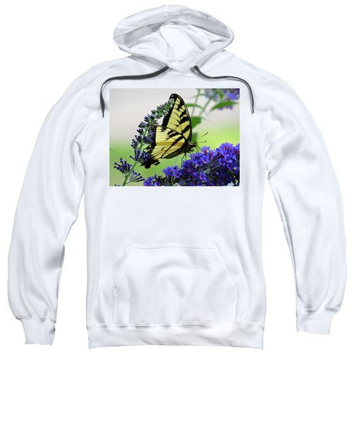 Feeding From A Nectar Plant Sweatshirt