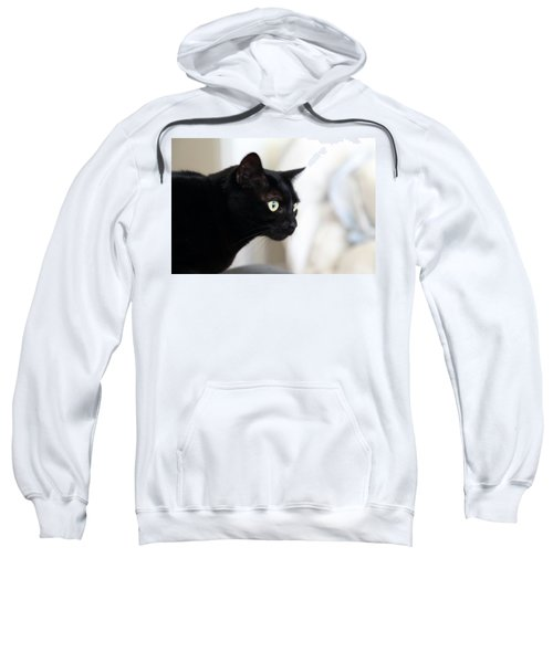 Feline On The Prowl Sweatshirt