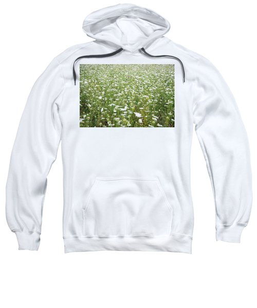 Field Of Queen Annes Lace Sweatshirt
